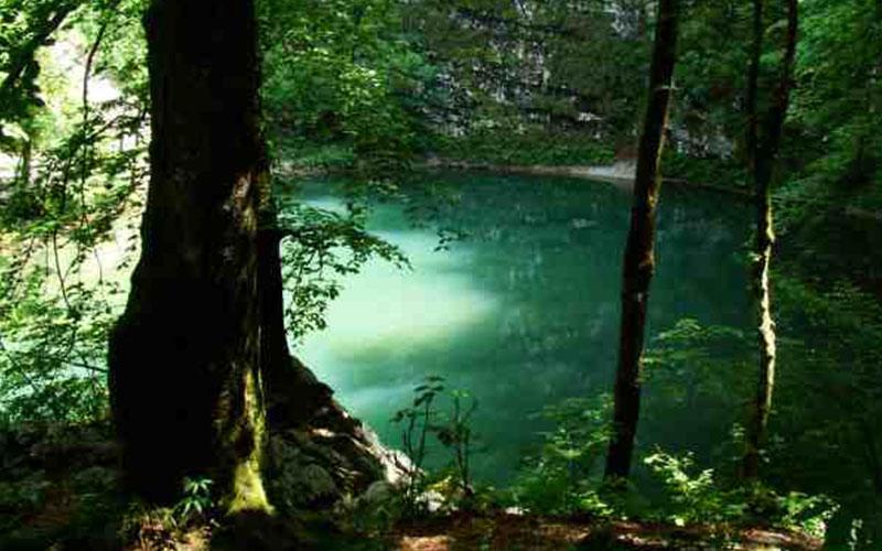Wild Lake, Idrijski Log